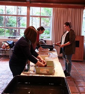 SOLD OUT - Papermaking with Plants