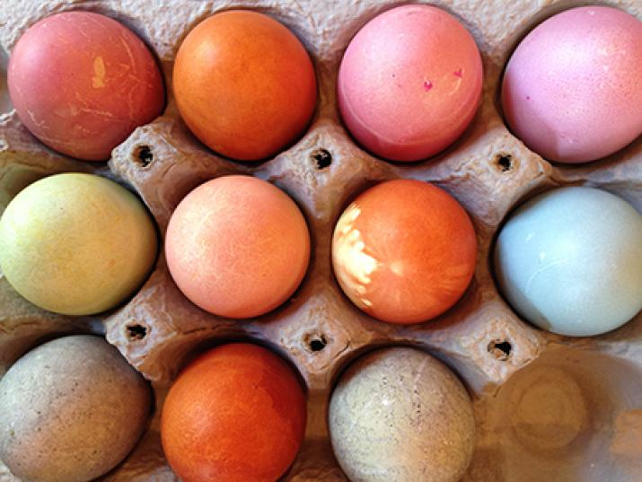 Naturally Dyed Eggs: Afternoon Session